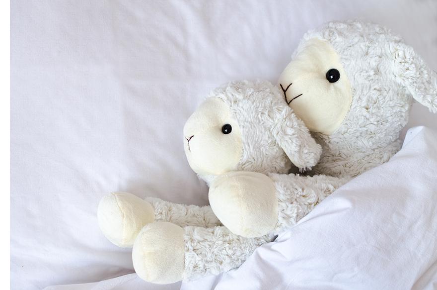 Moutons Lit